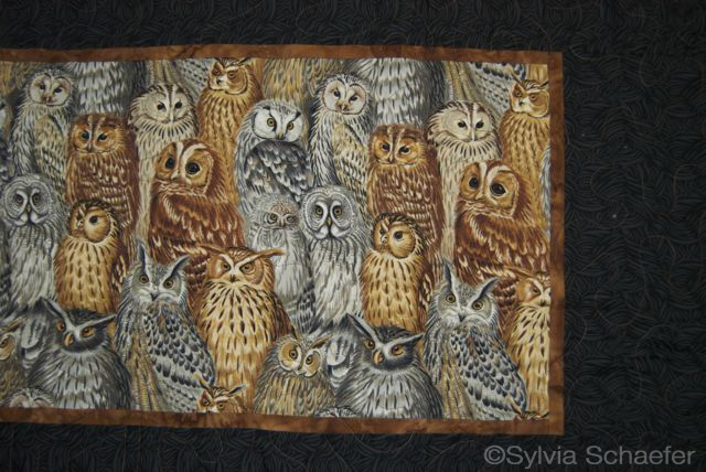 City of Owls by Sylvia Schaefer--back