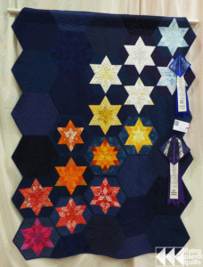 Main Sequence | Flying Parrot Quilts