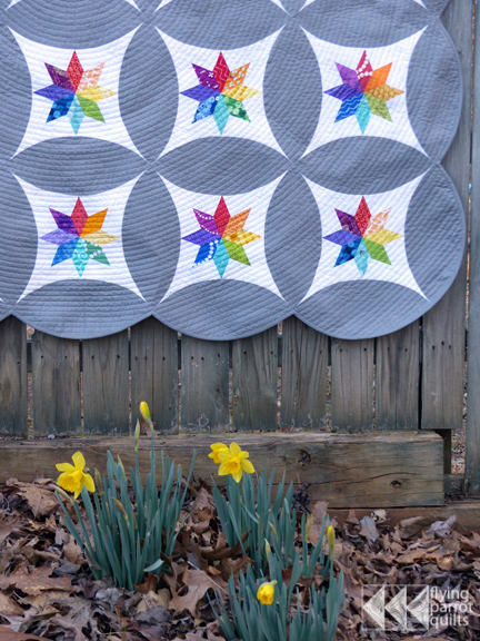 Celestial Orbs quilt | Flying Parrot Quilts