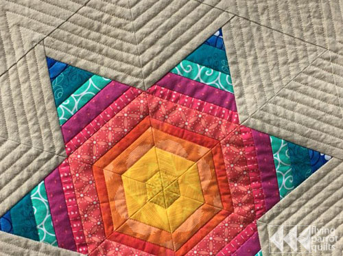 MQG swap mini detail | Flying Parrot Quilts